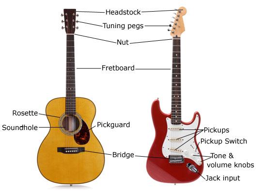 guitar-anatomy.jpg